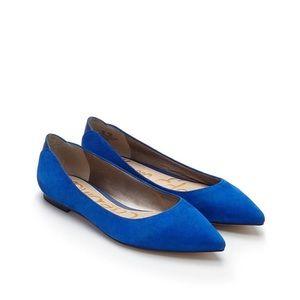 Sam Edelman Cobalt Blue Suede Pointed Toe Flat